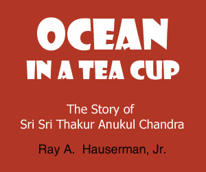 Ocean in a Tea Cup by Ray Hauserman - Satsang